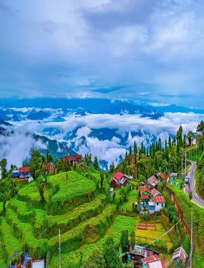 Darjeeling-